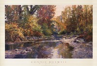 PEACEFUL SHOALS Fine Art Print