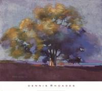 Twilight Oak III Fine Art Print