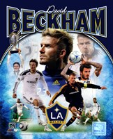 David Beckham 2012 Portrait Plus Fine Art Print