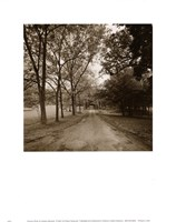 "11"" x 14"" Country Road Pictures"
