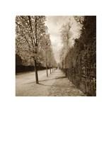 French Jardin Fine Art Print