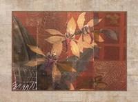 CORAL ORCHIDS I Fine Art Print
