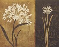 """Yin Yang II by Lisa Audit - 19"""" x 13"""""""