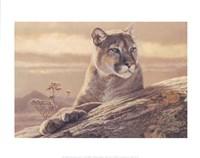 Desert Sunrise Fine Art Print