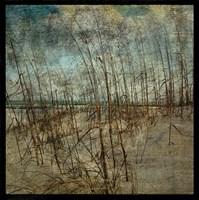 "Masonboro Island No. 6 by John W. Golden - 12"" x 12"""
