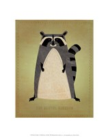 "The Artful Raccoon by John W. Golden - 11"" x 14"""