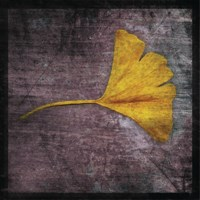 "Gingko 4 by John W. Golden - 12"" x 12"" - $12.99"