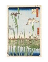 "Irises at Horikiri, 1857 by Ando Hiroshige, 1857 - 11"" x 14"""