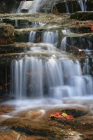 Waterfall Whitecap Stream Fine Art Print