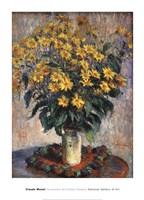 """Jerusalem Artichoke Flowers, 1880 by Claude Monet, 1880 - 26"""" x 36"""""""