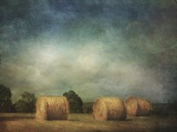 Hay Rolls Fine Art Print