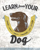 Learn From Your Dog Fine Art Print