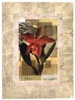 "EXOTIC BOOK II by John Butler - 19"" x 25"", FulcrumGallery.com brand"