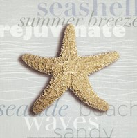 "Beach Collection II by Tandi Venter - 12"" x 12"", FulcrumGallery.com brand"