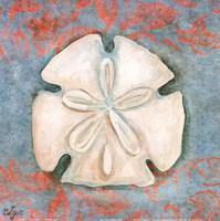 """Sand Dollar by Rebecca Lyon - 12"""" x 12"""""""