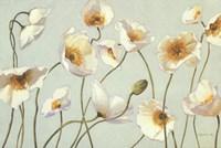 "White And Bright Poppies by Shirley Novak - 36"" x 24"""