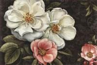 """Floral Damask I by Lisa Audit - 36"""" x 24"""""""