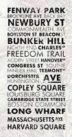 Boston Cities I by Veruca Salt - various sizes - $40.99