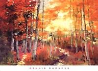 Golden Sunlight Fine Art Print