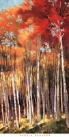 "Afternoon Sunlight by Dennis Rhoades - 20"" x 39"""