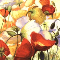 Poppies Up Close Fine Art Print