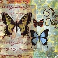 Homespun Butterfly I Fine Art Print