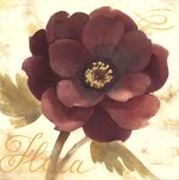 "Abundant Floral I by Albena Hristova - 18"" x 18"""