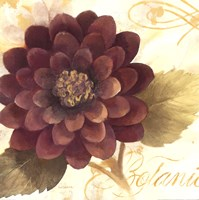 "Abundant Floral II by Albena Hristova - 18"" x 18"""