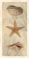 Ocean Companions I Fine Art Print