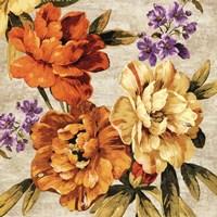 Brilliant Bloom I Fine Art Print