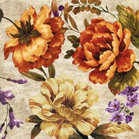 Brilliant Bloom II Fine Art Print