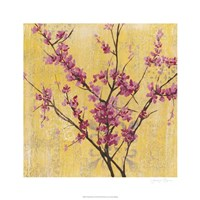 "Fuchsia Blossoms I by Jennifer Goldberger - 26"" x 26"""