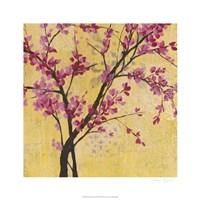 """Fuchsia Blossoms II by Jennifer Goldberger - 26"""" x 26"""""""