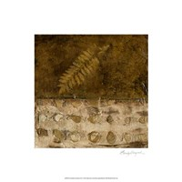 Earthen Textures IX Fine Art Print