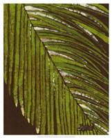 """Batik Frond II by Andrea Davis - 17"""" x 21"""""""