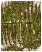 """Batik Frond III by Andrea Davis - 17"""" x 21"""""""