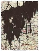 "Batik Hanging Leaves I by Andrea Davis - 19"" x 25"""
