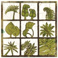 Verde 9-Patch Fine Art Print