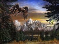 Soaring Eagle Fine Art Print
