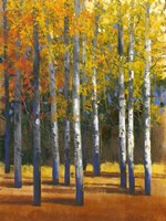 Fall in Glory I by Timothy O'Toole - various sizes, FulcrumGallery.com brand
