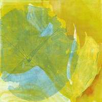 Lotus Monotype I Fine Art Print