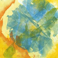 Lotus Monotype II Fine Art Print