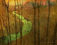 Woodblock Stream I Fine Art Print
