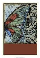 Butterfly Tapestry II Framed Print