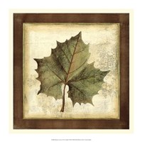 "Rustic Leaves I - No Crackle by Vision Studio - 16"" x 16"""