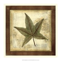 "Rustic Leaves II - No Crackle by Vision Studio - 16"" x 16"""