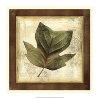 "Rustic Leaves III - No Crackle by Vision Studio - 16"" x 16"""