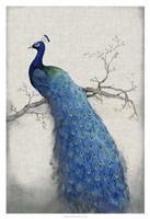 "Peacock Blue II by Timothy O'Toole - 26"" x 38"", FulcrumGallery.com brand"