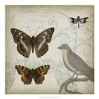 "Cartouche & Wings III by Jennifer Goldberger - 20"" x 20"""
