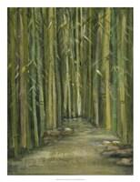 Bamboo Pond Fine Art Print